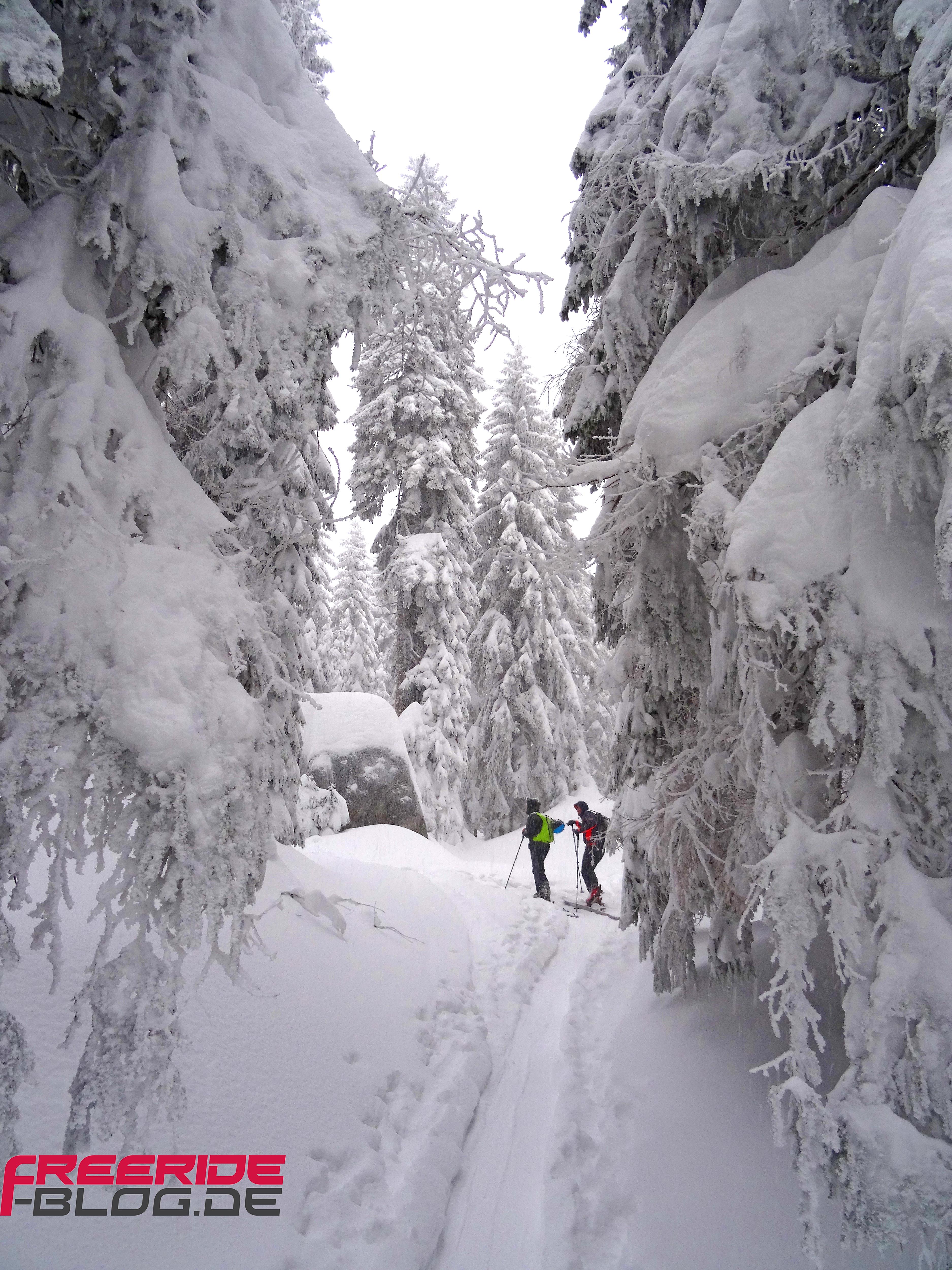 Von Bodenmais Auf Den Arber Eine Kleine Skitour Im Bayerischen